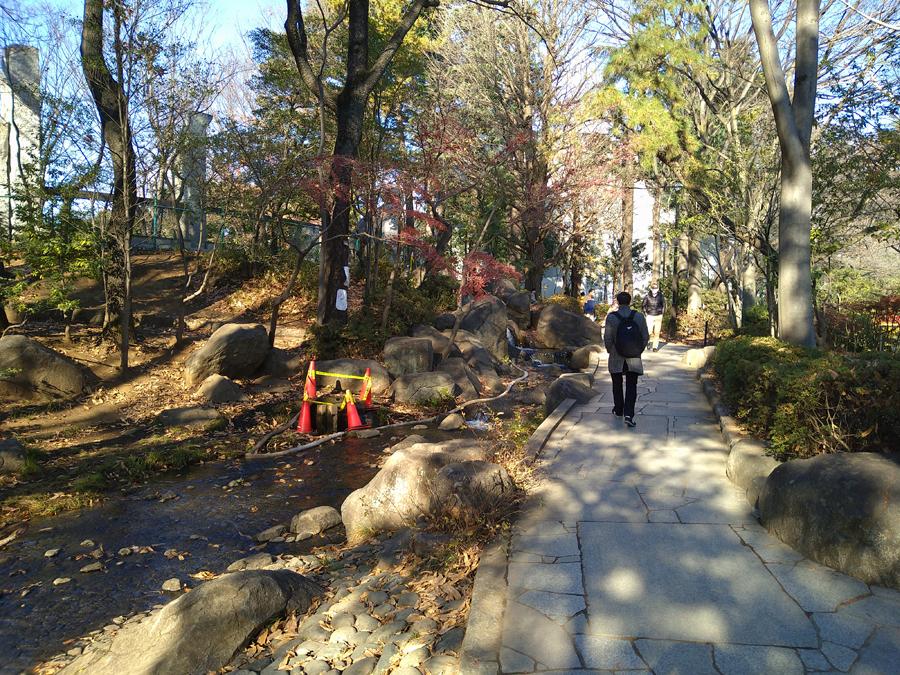 ブランシャール東高円寺